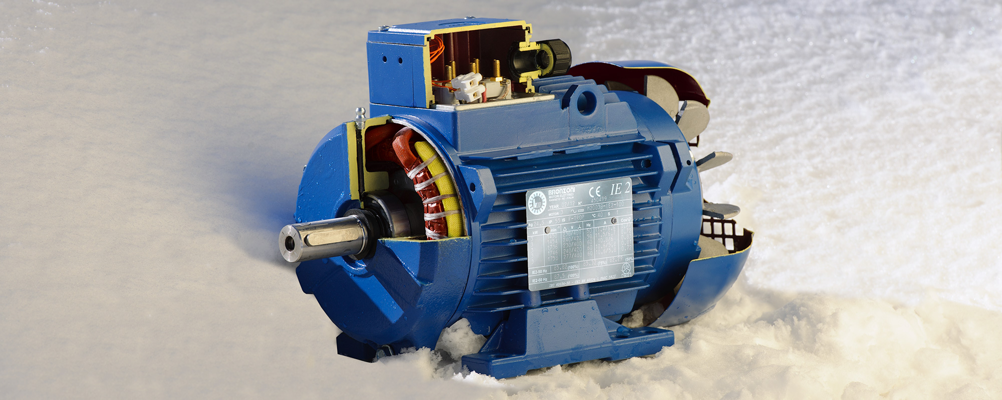 BRONZONI SPECIAL ELECTRIC MOTORS | THREE-PHASE FOR COLD ENVIRONMENTS